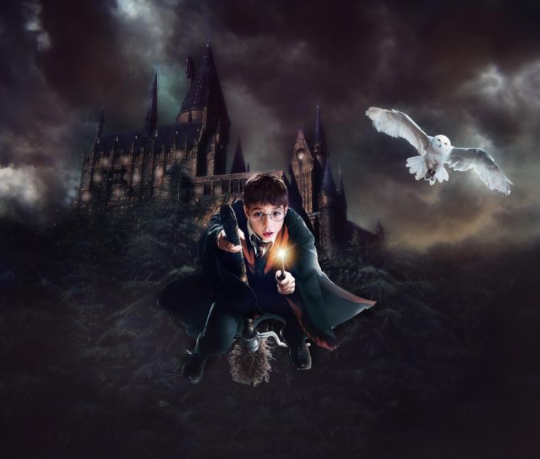 Cabe Harry Potter